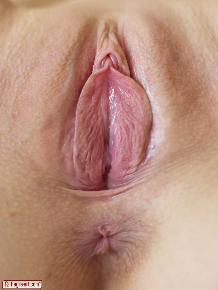 Join ass hole pussy shaved